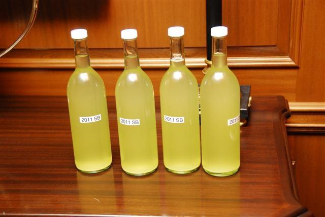 """Sauvignon Blanc """"Freckled Farm"""" Napa County 2011"""