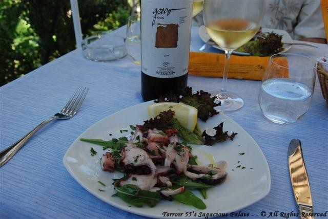 Pietracupa 2011 Greco Di Tufo with grilled octopus salad