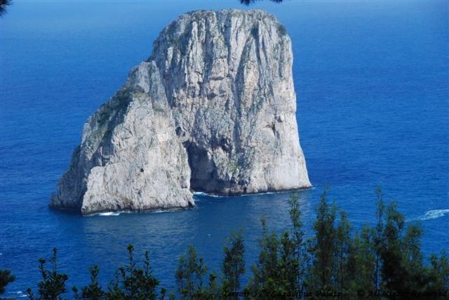 View of Faraglioni from il Geranio