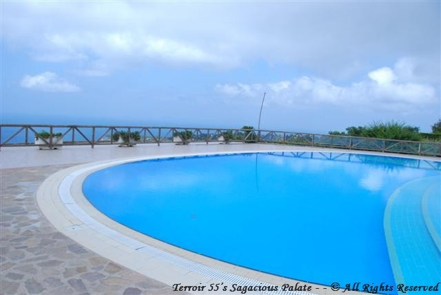 The pool overlooking the bay