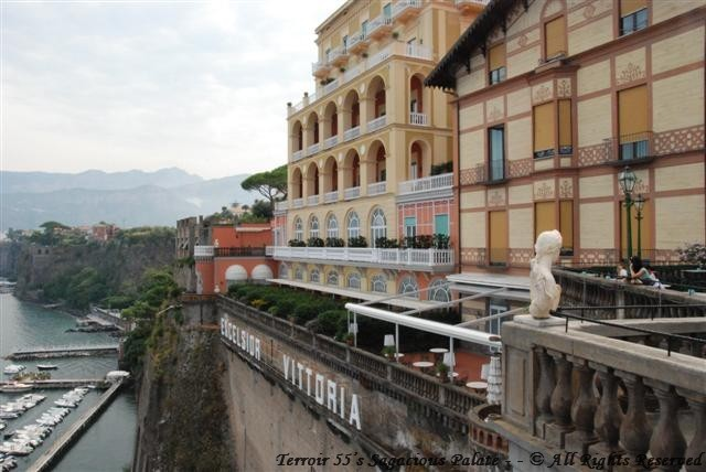 View from Hotel Excelsior Vittoria's Terrace
