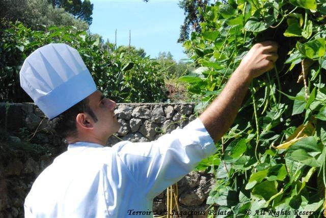 Chef Eduardo picking green peas