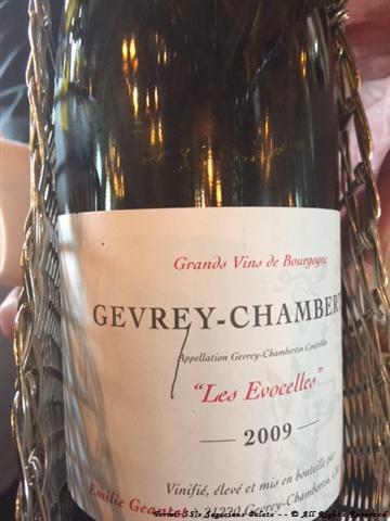 2009 Gevrey-Chambertin, Domaine Emilie Geantet