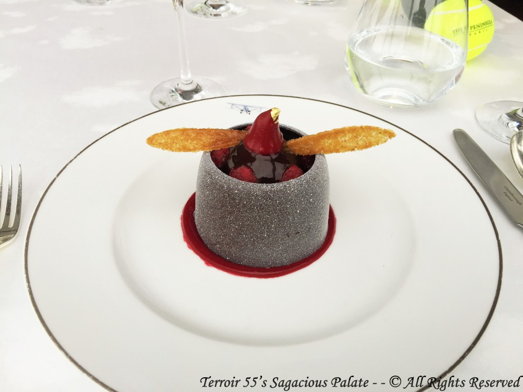 """Envol"" chocolate cake, raspberry sorbet"
