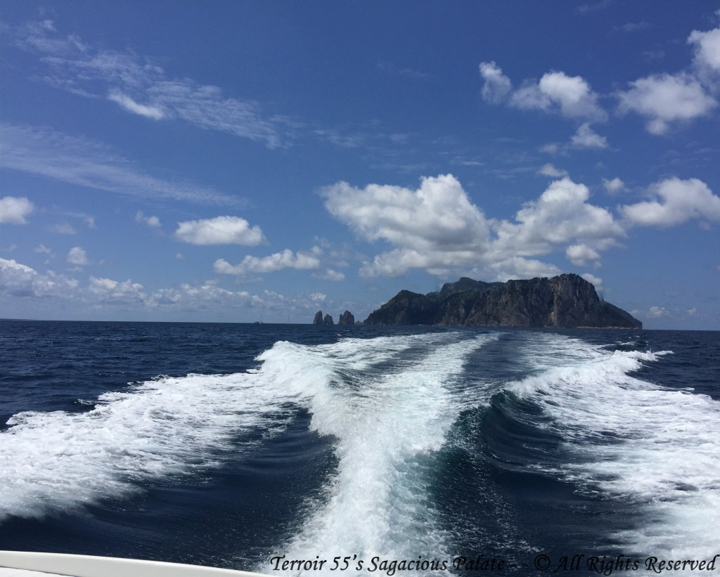 Cruising The Mediterranean - Faraglioni