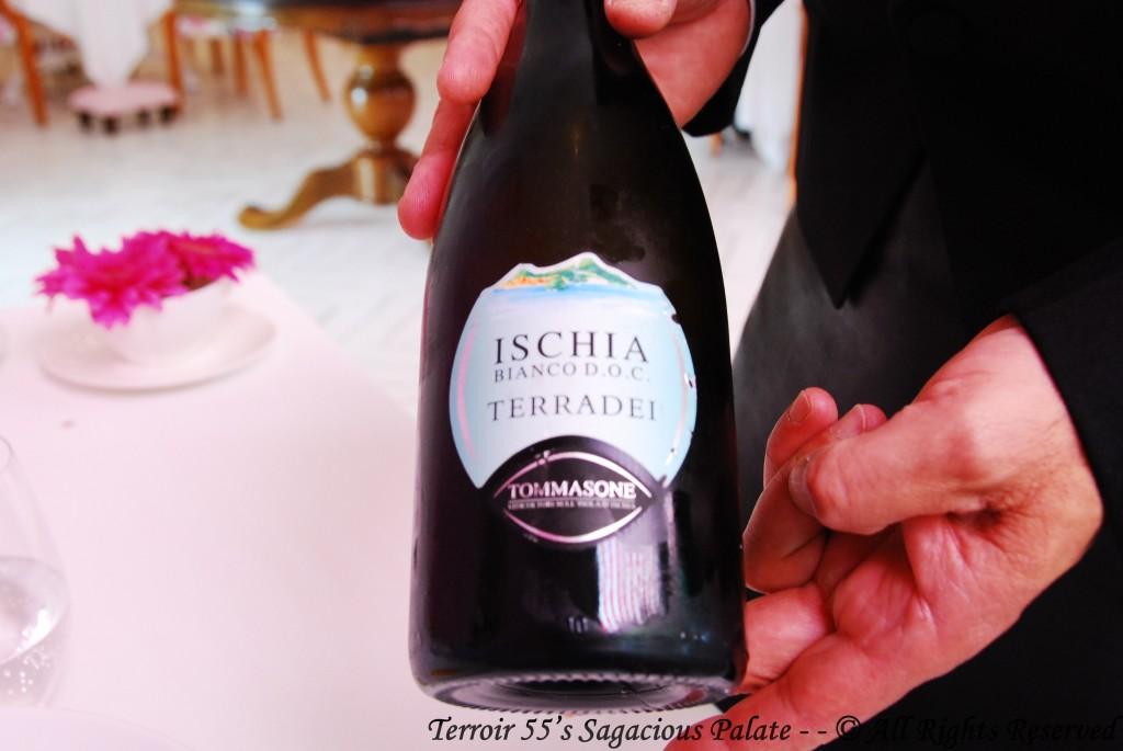 Terradei Ischia - Bianco D.O.C. - Tommasone